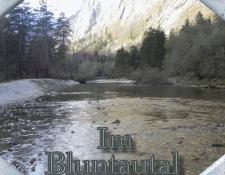 bluntautal1