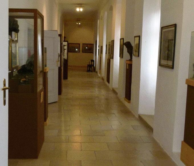 burg-lockenhaus19