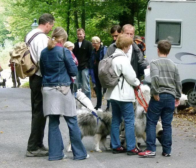 burg-lockenhaus5