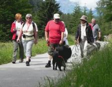 seewaldsee11