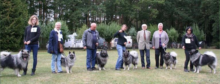 Nachzuchtgruppe Fritzis Woelfe 1.Platz