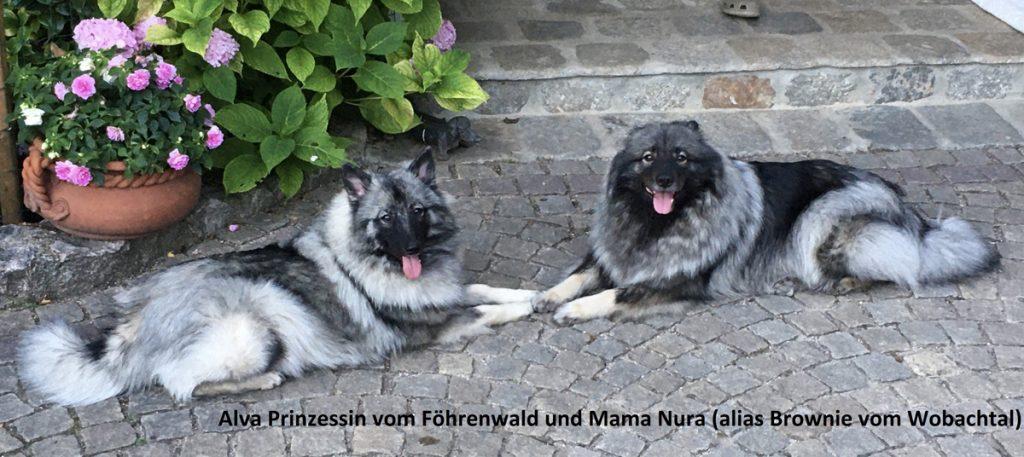 Alva & Nura